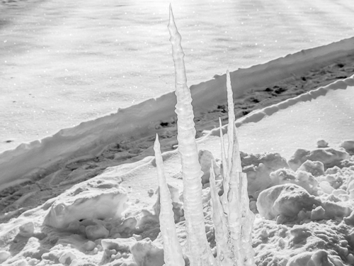 black and white, closeup of icicles lit by sun, pathway in snow