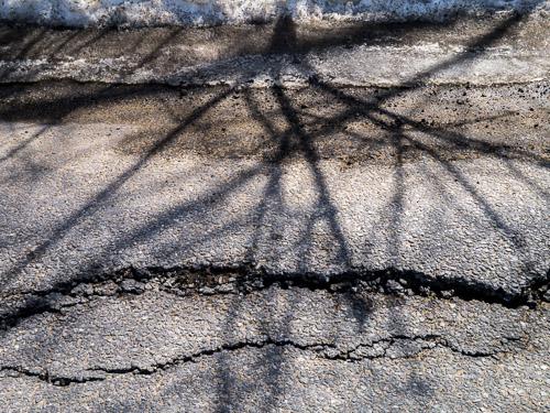 closeup of tree branch shadows on asphalt road, cracks, snow