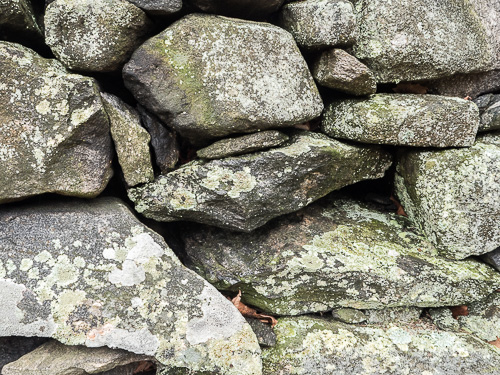 stone wall with lichen, closeup