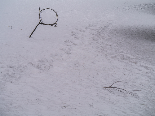 Stick Hoop on Snow