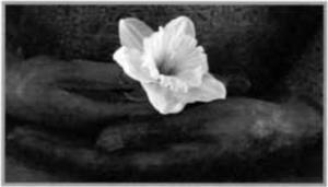 Spring05_AT2